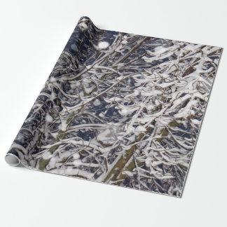 Papel De Presente Foto da árvore do blizzard (com ramos cobertos de