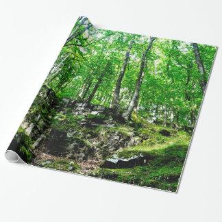 Papel De Presente Fugas da floresta que andam no vale de Wales Neath