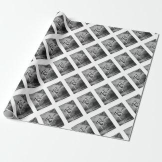 Papel De Presente Goya_-_Caprichos_