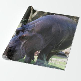 Papel De Presente Hipopótamo AJ17