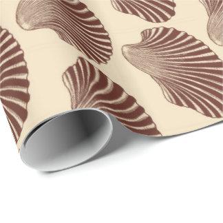 Papel De Presente Impressão, Brown e bege de bloco de Shell de