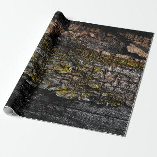 Papel De Presente Latido de madeira mossy legal de Brown com líquene