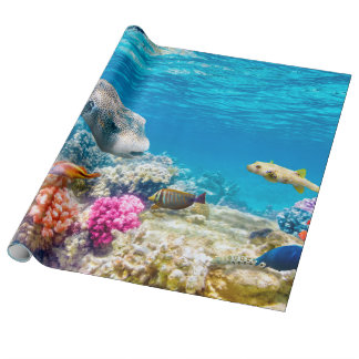Papel De Presente mundo subaquático bonito dos peixes, wather