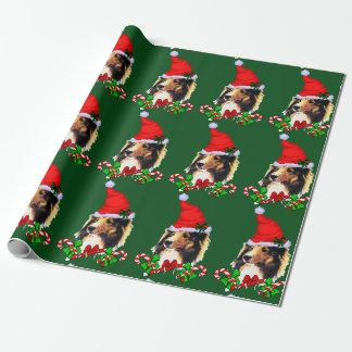 Papel De Presente Natal do papai noel de Sheltie