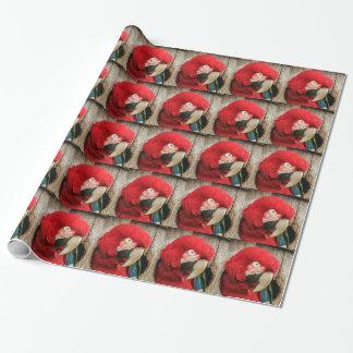 Papel De Presente Papagaio verde do macaw da asa do papel de