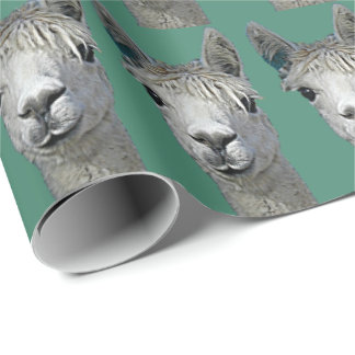 Papel De Presente Papel da alpaca