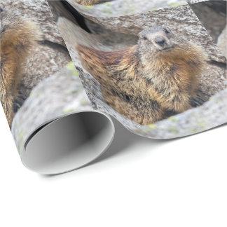 Papel De Presente Papel de envolvimento alpino da marmota