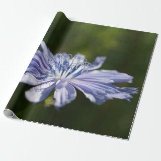 """Papel De Presente Papel de envolvimento azul do Wildflower, 30"""" x 6'"""