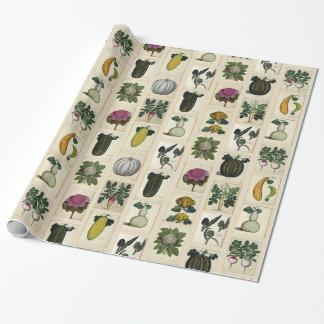 Papel De Presente Papel de envolvimento botânico vegetal dos