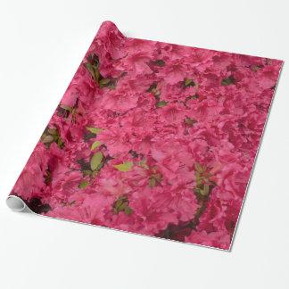Papel De Presente Papel de envolvimento cor-de-rosa da azálea