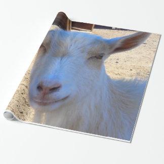 Papel De Presente Papel de envolvimento da cabra