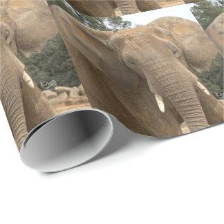 Papel De Presente Papel de envolvimento de Dumbo