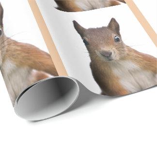 Papel De Presente Papel de envolvimento do retrato do esquilo