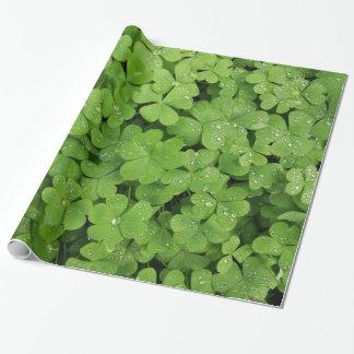 Papel De Presente Papel de envolvimento verde dos pingos de chuva do