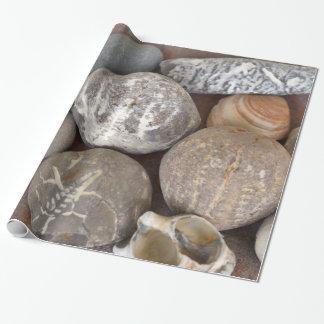 Papel De Presente Papel de presente, 76,2 x 1,8 m - colecção de
