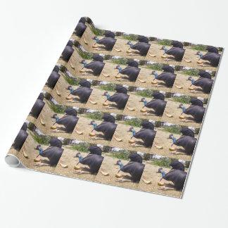 Papel De Presente Pássaro do Cassowary que come melões,