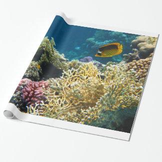 Papel De Presente Peixes amarelos e pretos da borboleta