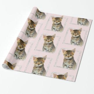 Papel De Presente Pintura do gatinho do gato malhado com quadro de