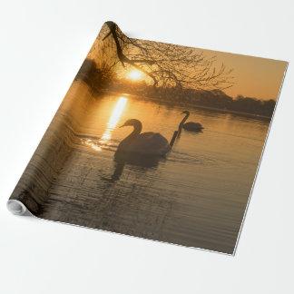 Papel De Presente Por do sol com cisne