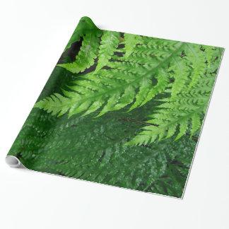 Papel De Presente Samambaias da selva