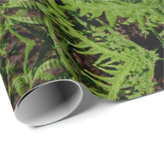Papel De Presente Samambaias verdes