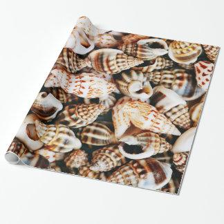 Papel De Presente Seashells minúsculos