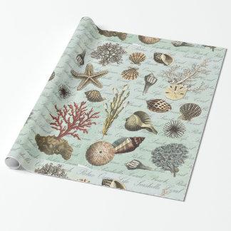 Papel De Presente Seashells modernos do vintage