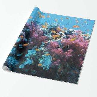Papel De Presente Sob o coral e os peixes da água