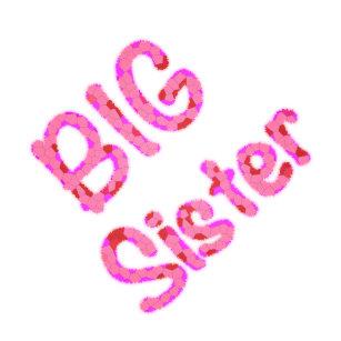Presentes Aniversário Da Irmã Mais Velha Zazzlecombr