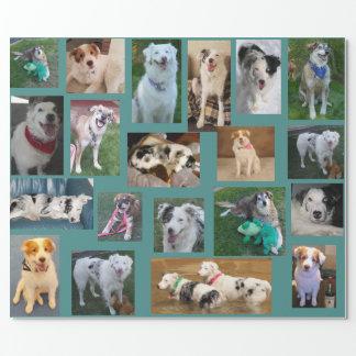 Papel De Presente Todo o cão que envolve Paper2