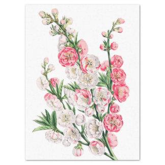 Papel De Seda A flor cor-de-rosa e branca pulveriza o lenço de