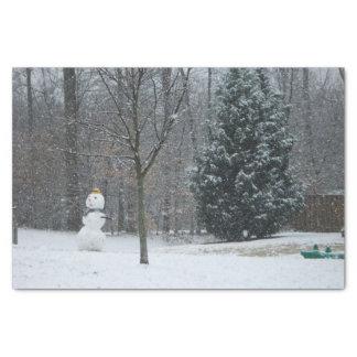 Papel De Seda A fotografia da neve do inverno do boneco de neve