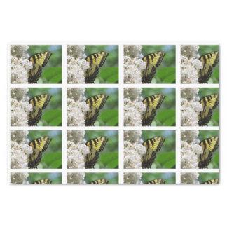 Papel De Seda Azulejos brancos dos Lilacs da borboleta amarela