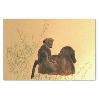 Papel De Seda Babuínos da mãe & do bebê - primatas dos macacos