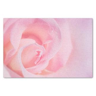 Papel De Seda Bonito no rosa