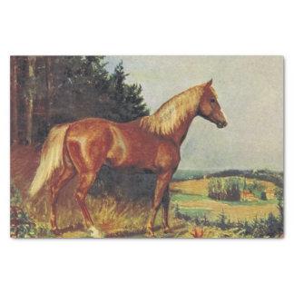 Papel De Seda Cavalo da castanha