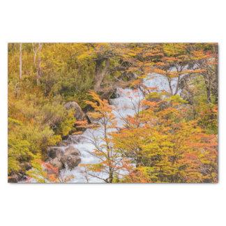 Papel De Seda Cena colorida da paisagem da floresta, Patagonia
