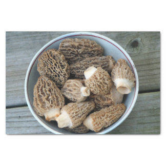 Papel De Seda Cogumelos do Morel