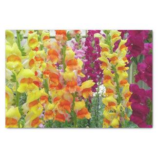 Papel De Seda Floral colorido de Snapdragons