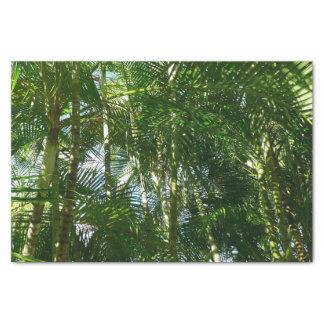 Papel De Seda Floresta do verde tropical das palmeiras