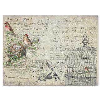 Papel De Seda Folha de Decoupage das coisas efêmeras do pássaro