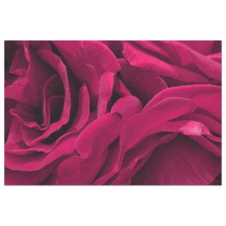 Papel De Seda Foto floral dos rosas cor-de-rosa fúcsia