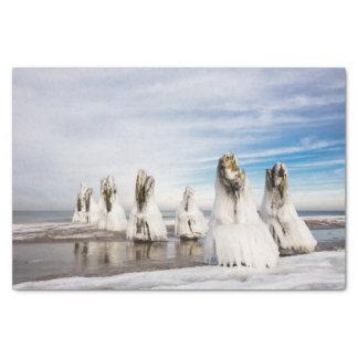 Papel De Seda Groynes na costa de mar Báltico