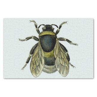 Papel De Seda Ilustração antiga da abelha