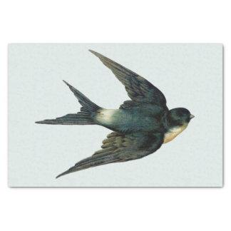 Papel De Seda Ilustração do pássaro da andorinha do vintage