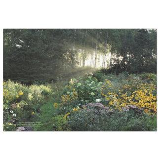 Papel De Seda Jardins dos Sunrays ao fim de setembro