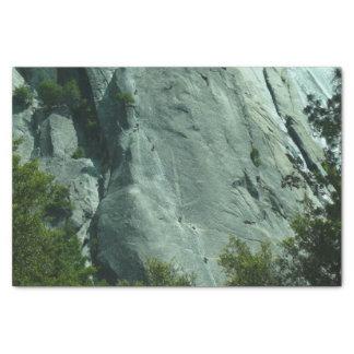 Papel De Seda Montanhistas de rocha no EL Capitan