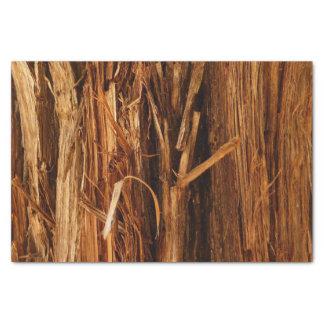 Papel De Seda O cedro Textured o olhar de madeira do latido