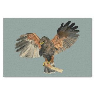 Papel De Seda O Flapping do falcão voa a pintura da aguarela