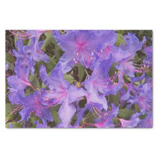 Papel De Seda O rododendro roxo floresce floral